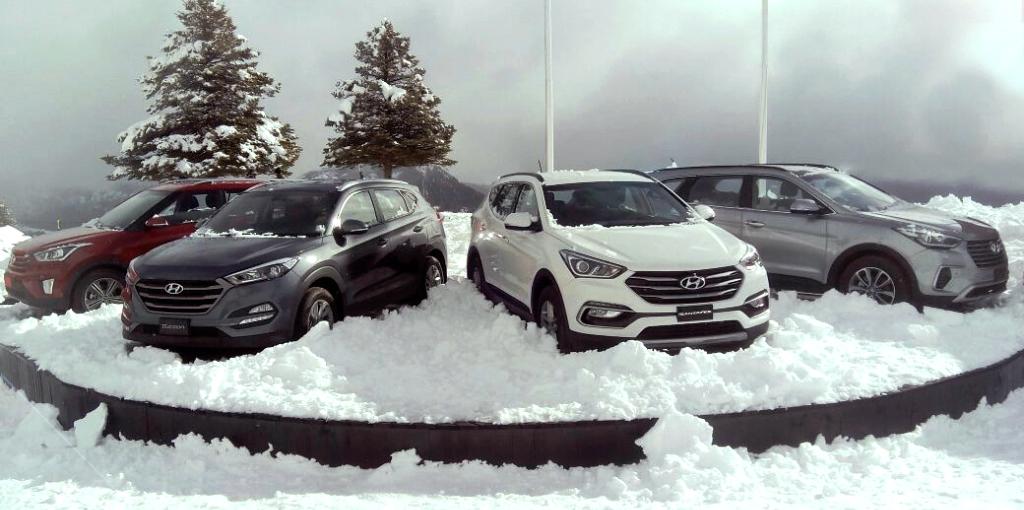 Hyundai Tucson Santa FE Creta